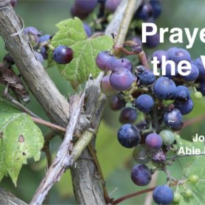 """Prayer in the Vine"" John 15: 7-8"