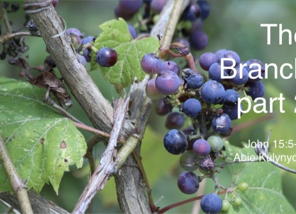 """The Branch part 2"" John 15:5-6"