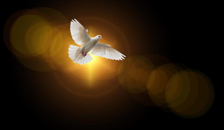 """""""A Helper in Uncertainty,"""" John 15:26-27"""